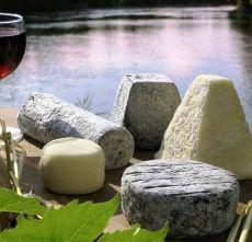 Kaasschotel + broodjes + wijn